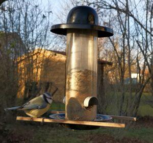 Vogel an Futtersäule